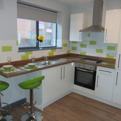 Brand New Modern Kitchens With Built In Cooker, Extractor, Fridge, Freezer,  Microwave, Storage Cupboards, Kettle, Iron And Ironing Board, Lounge U0026  Dining ...