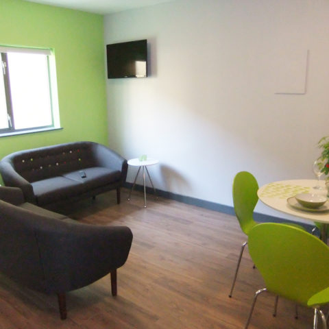 Kingfisher Court Student Apartment Lounge